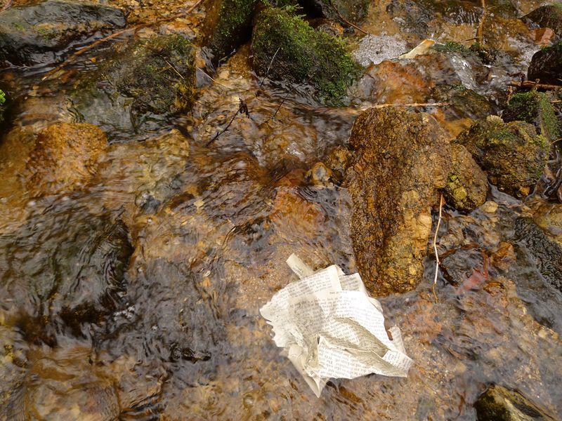 Wood & Water 9
