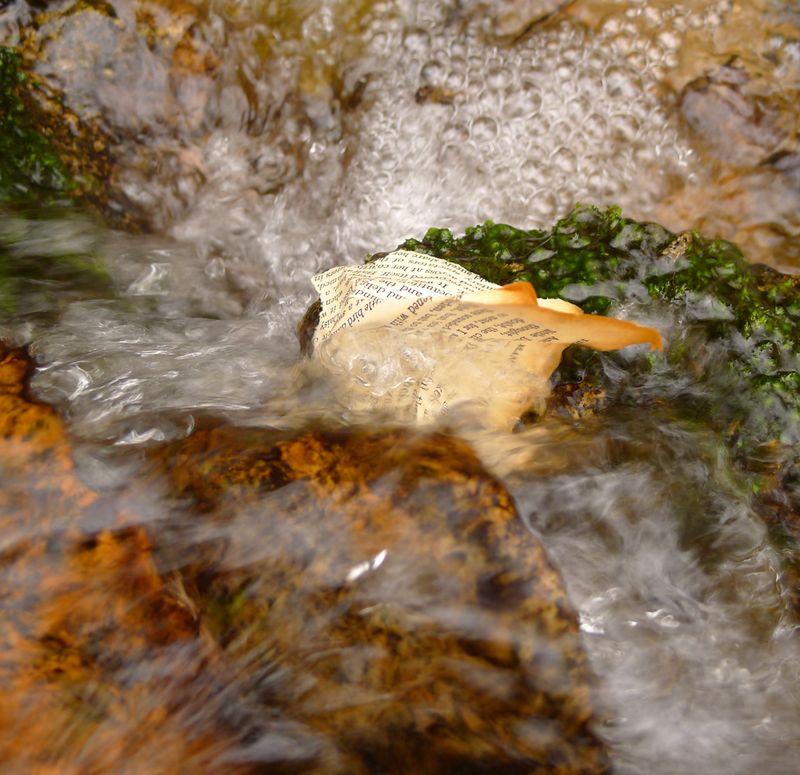 Wood & Water 12