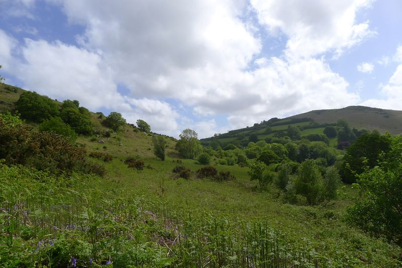 Hill 8