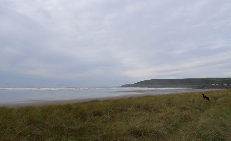 Gazing out to sea, north Devon