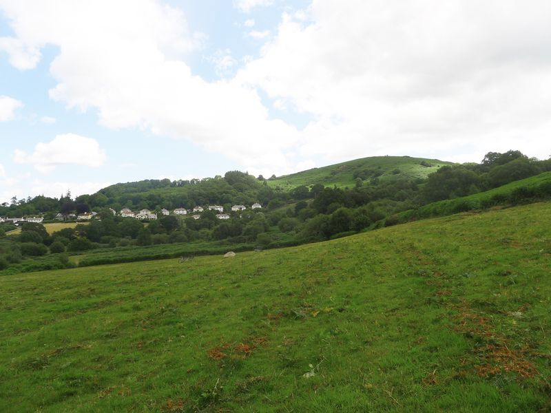 Nattadon Hill view from Chagford Commons