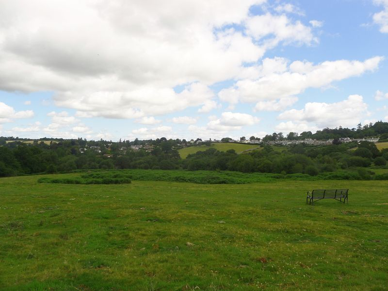 Chagford Commons