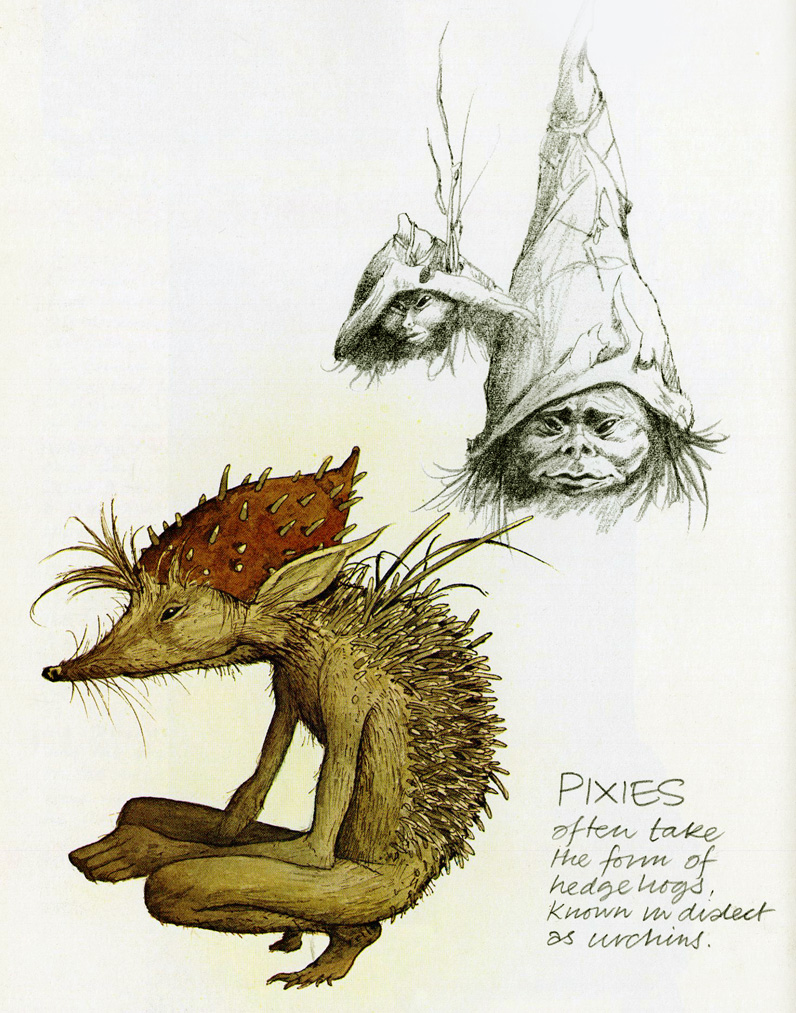 Dartmoor Pixies by Brian Froud