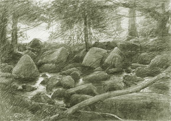 A Dartmoor river by Alan Lee