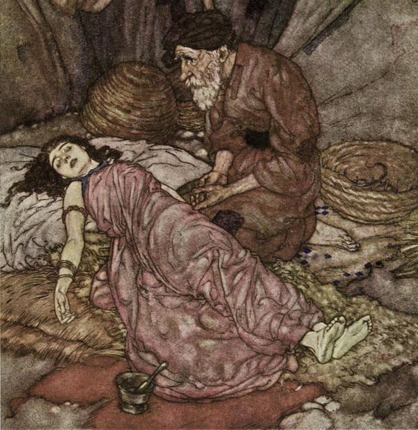 The Rubaiyat of Omar Khayyam by Edmund Dulac