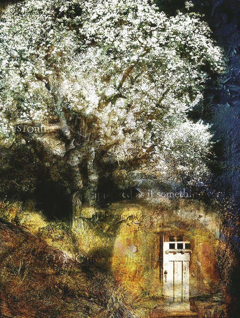 The Tree of Doors by Meg Zivahl-Fox