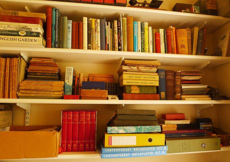 Books above Agatha's desk