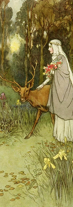 The Book of Fairy Poetry illustrated by Warwick Goble