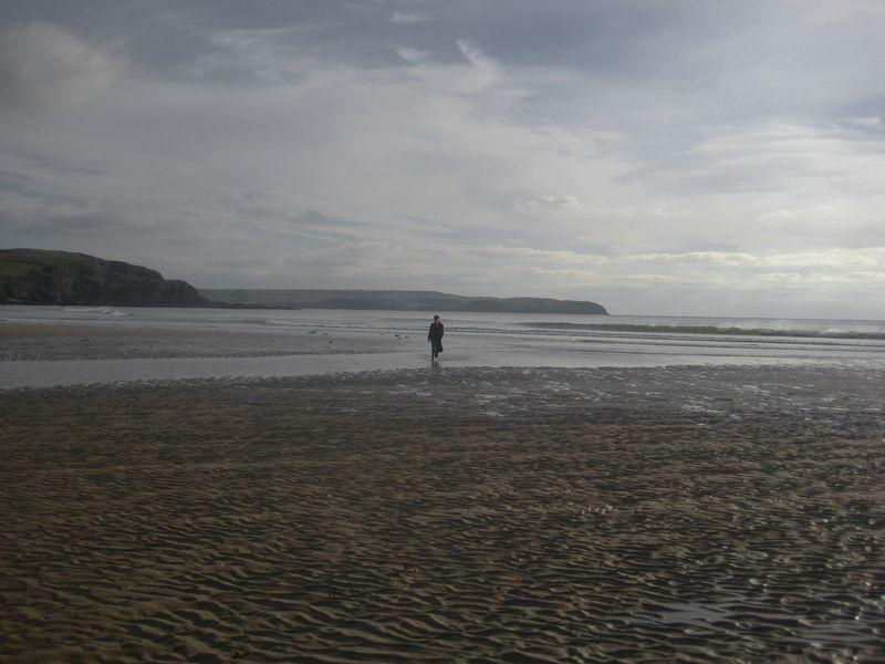 On the south Devon coast