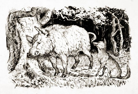 The Fox and the Boar by H.J. Ford