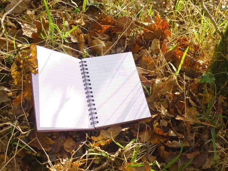 Notebook in the leaves