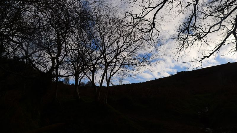 Nattadon Hill 2