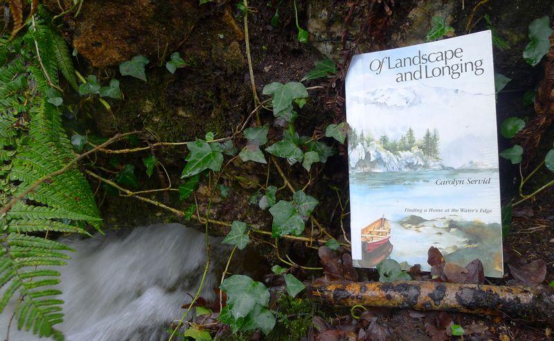 Of Landscape & Longing by Carolyn Servid