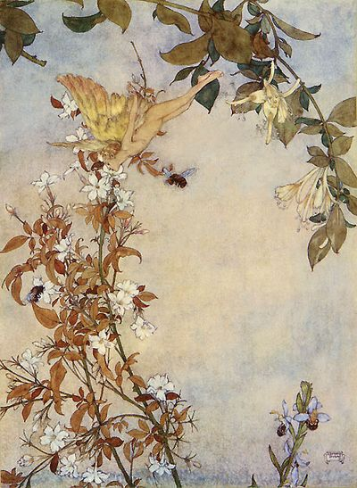 Fairies by Edmund Dulac