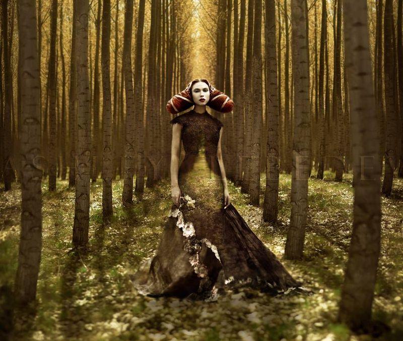 Fairy photography by Ashley Lebedev
