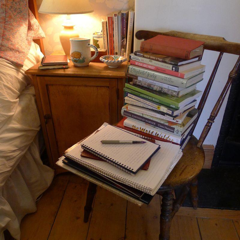 Bedside reading