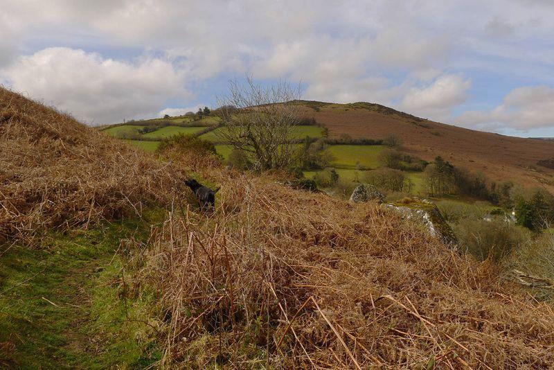 Nattadon Hill 7