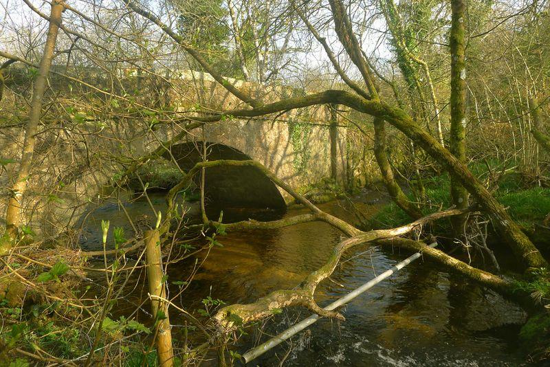 Old stone bridge near Chagford