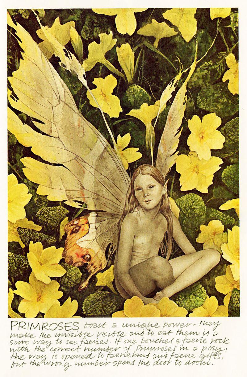 Primrose Faery by Brian Froud