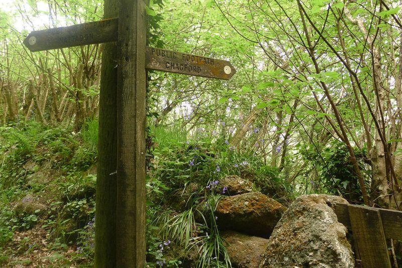 Chagford signpost