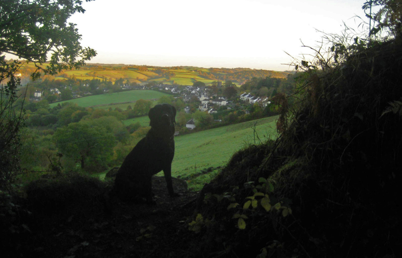 Dawn breaking over Chagford
