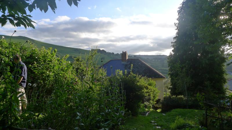 Howard in the garden