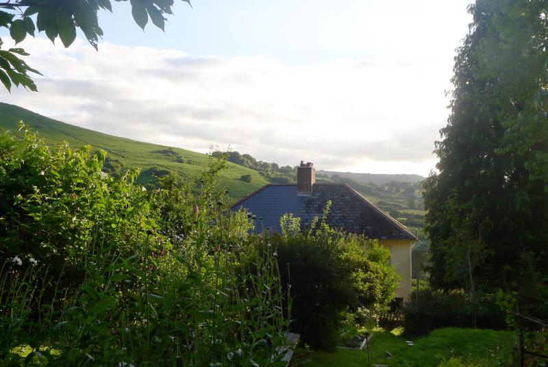 Bumblehill