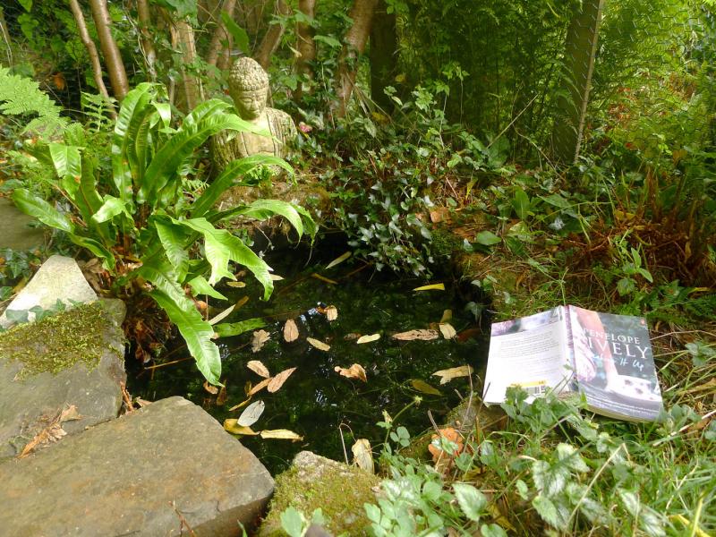 Studio pond