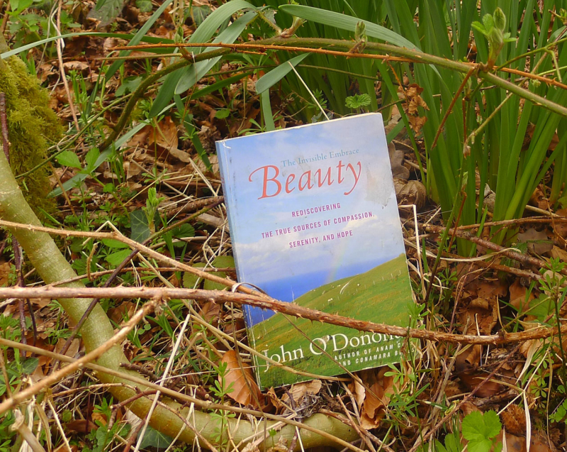 Beauty by John O'Donohue