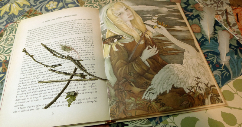 the Wild Swans illustrated by Adrienne Segur