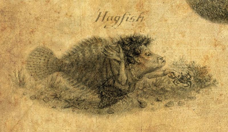 Hagfish by Virginia Lee