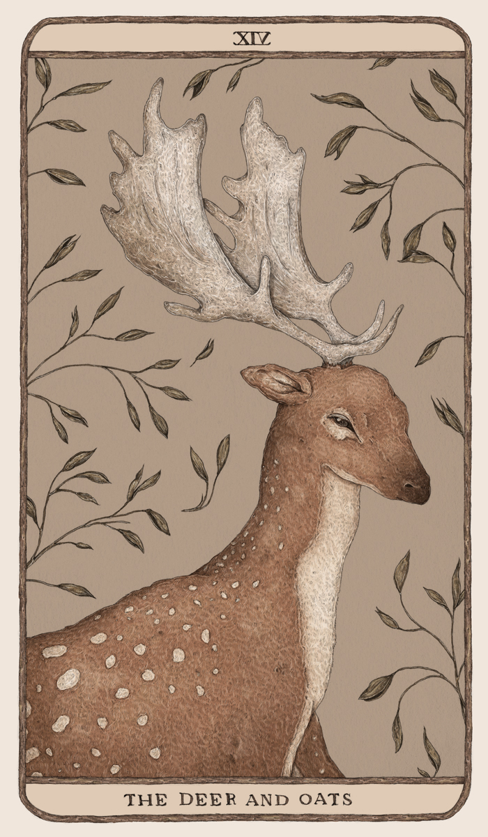 The Deer and the Oats by Jessica Roux