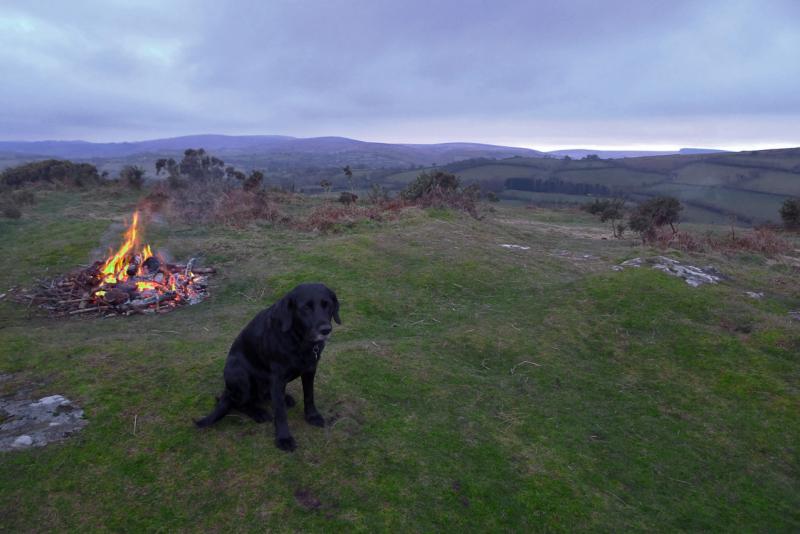 Easter hound, Nattadon Hill