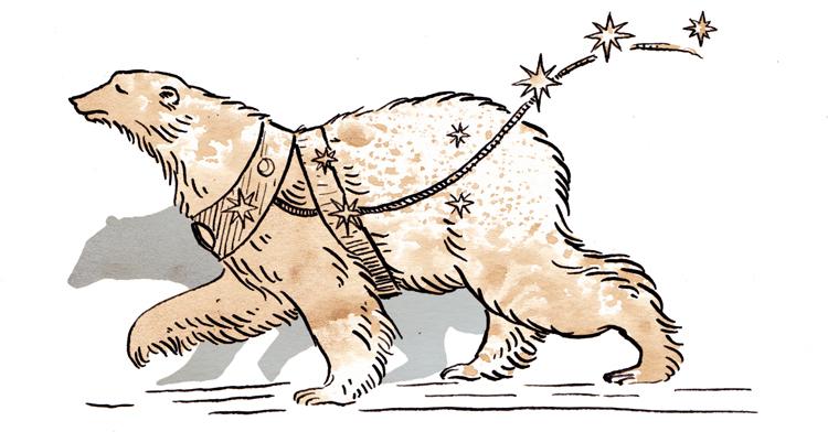 Bear by Kathleen Jennings