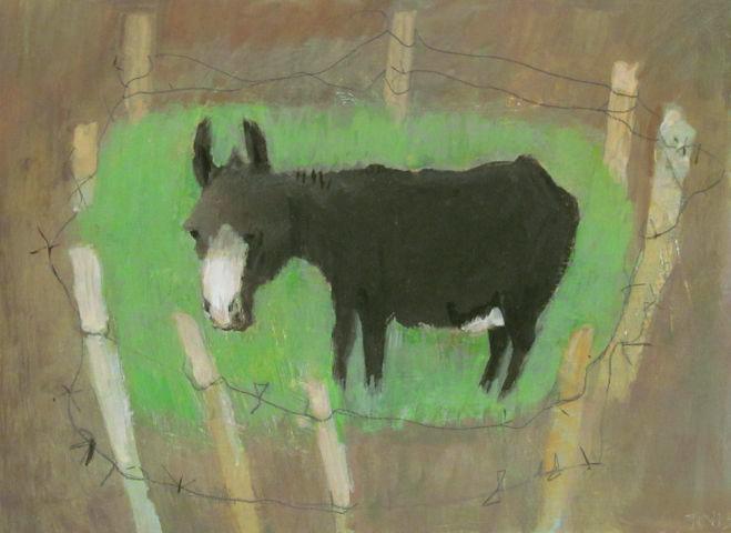 Donkey by Tessa Newcomb