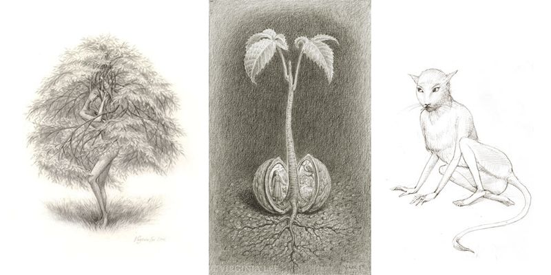 Drawings by Virginia Lee
