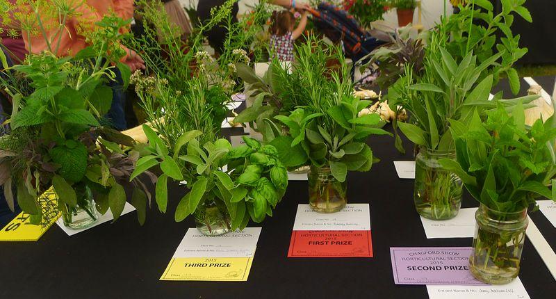 Prize-winning herbs