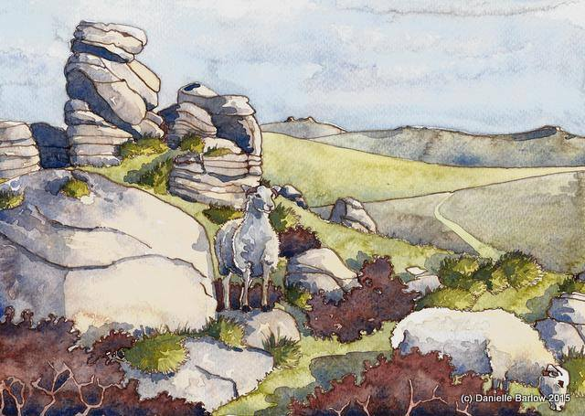 Sheep at Hound Tor by Danielle Barlow