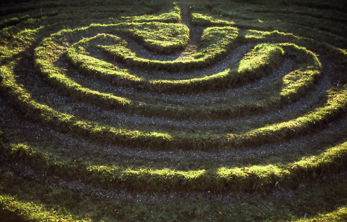 Turf maze near Dalby, North Yorkshire