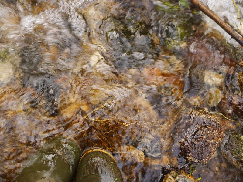 Water and wellies