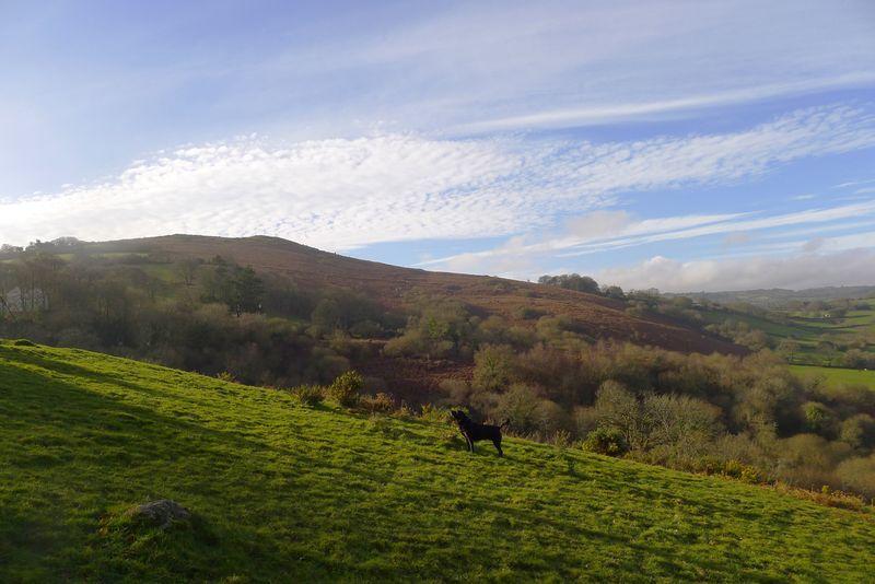 Nattadon Hill 9