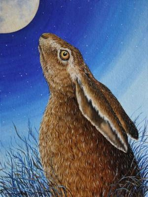 Moon Watching Hare by Eleanor Ludgate, Chagford Gallery