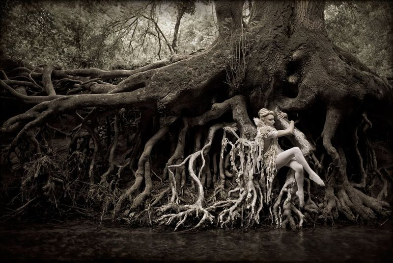 Fairy photography by Kristy Mitchell