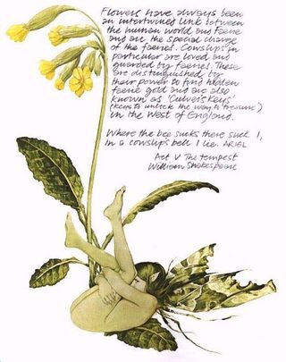 Cowslip faery by Brian Froud