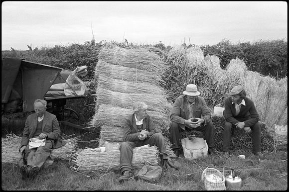 Reedcombers' tea break by James Ravilious