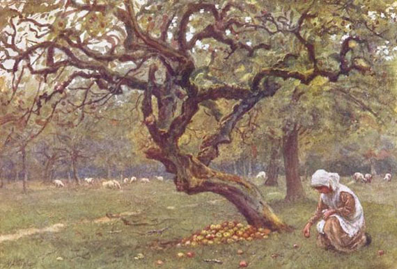 Apple Orchard by Helen Allingham