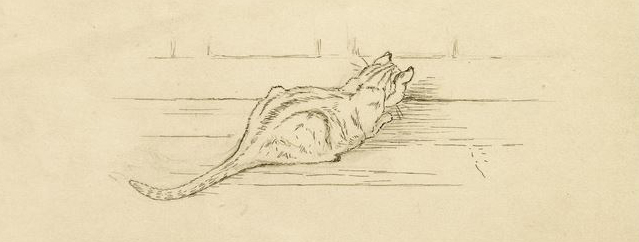 Cat sketch by Beatrix Potter