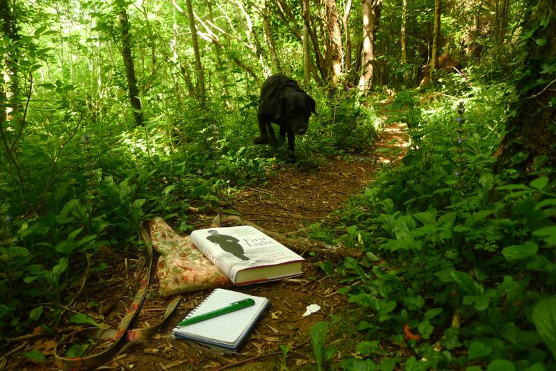 Book & trail