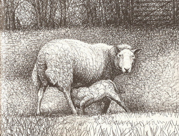 Sheep with lamb by Henry Moore
