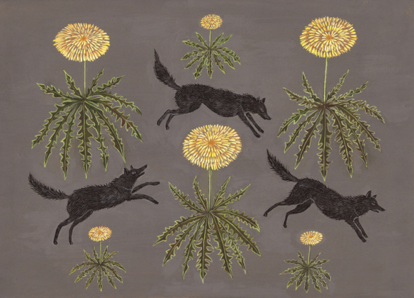 Dandelion Dogs by Kelly Louise Judd